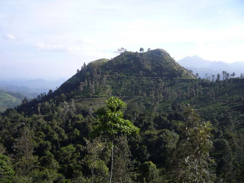 Little Adam's Peak in Ella