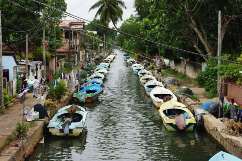 Dutch canals in negombo